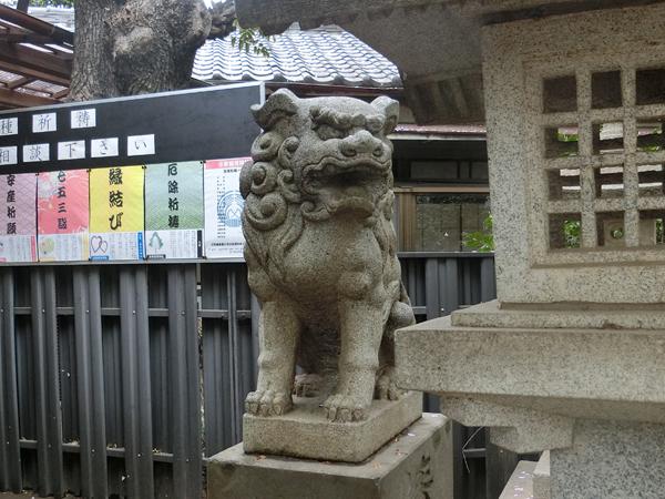 子安稲荷神の右の狛犬
