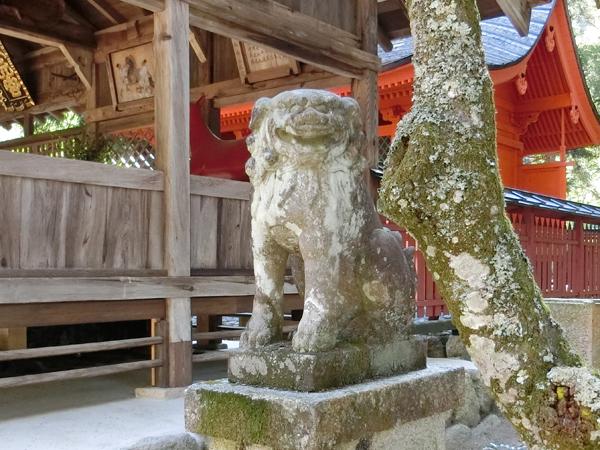 大元神社の右の狛犬