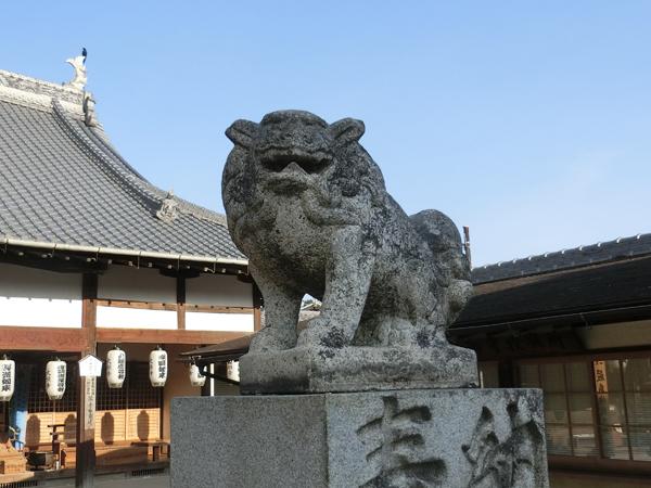 大願寺の右の狛犬