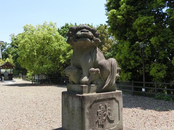 十二神社の右の狛犬