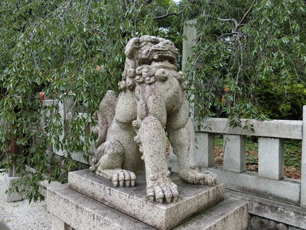 乃木神社の右の狛犬