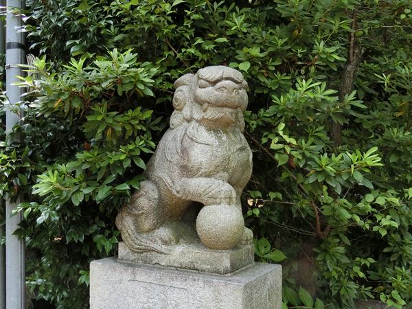 葛谷御霊神社の左の狛犬
