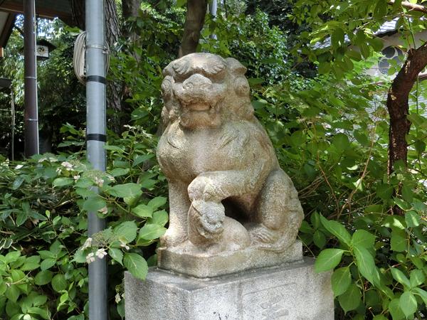 葛谷御霊神社の右の狛犬