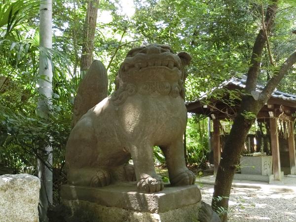 西久保八幡神社の左の狛犬