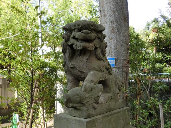 溝口神社の右の狛犬