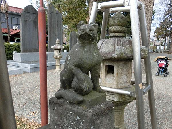 登戸稲荷神社の狐