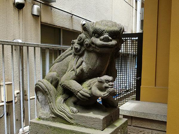 新宿秋葉神社の狛犬