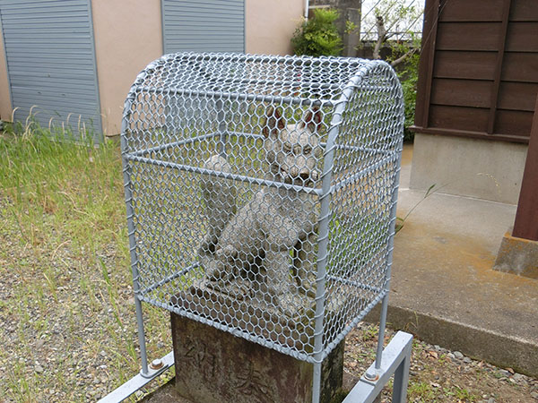 野戸呂稲荷神社の狐