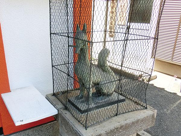 桝箕稲荷神社の狐