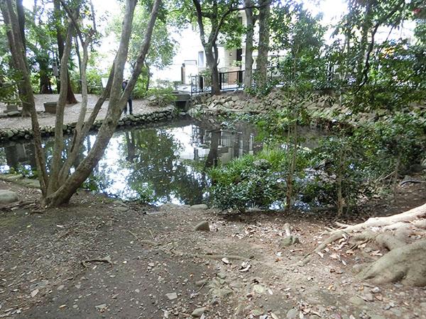 狛江弁財天池