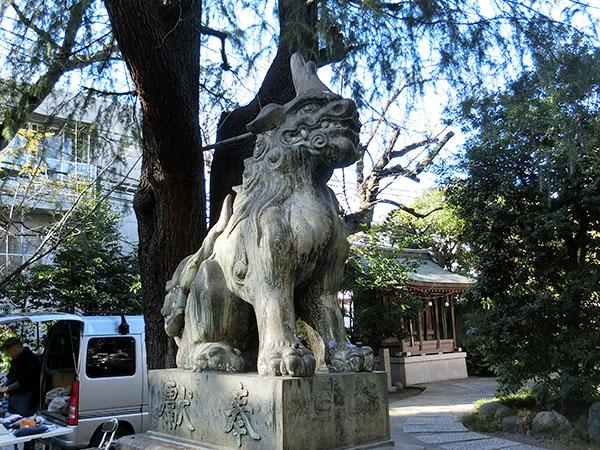 青山熊野神社の狛犬