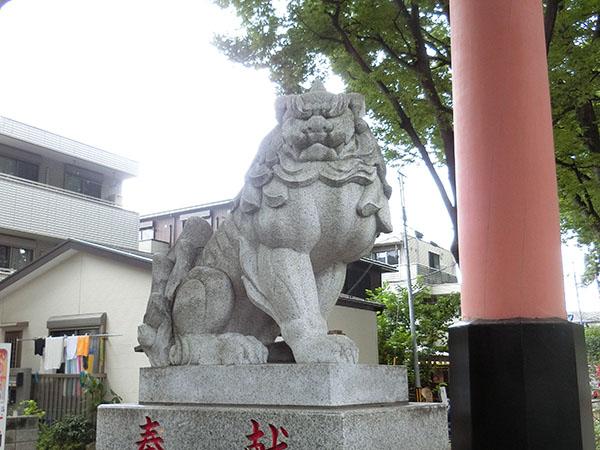 大宮氷川神社の狛犬