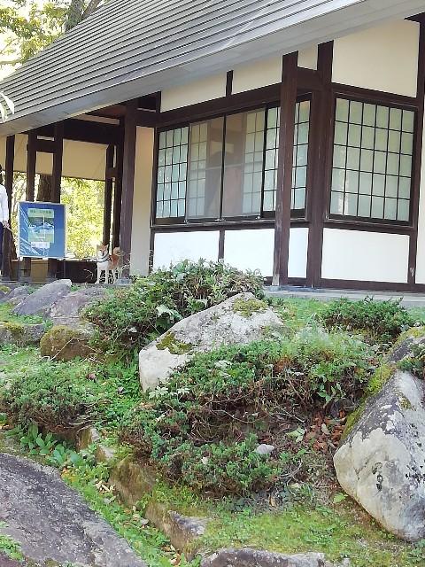 f:id:inuhitogurashi:20191017073618j:image