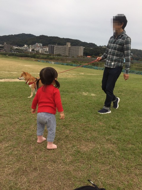 f:id:inuhitogurashi:20191025140401j:image
