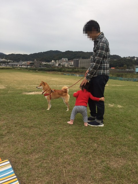 f:id:inuhitogurashi:20191025140430j:image