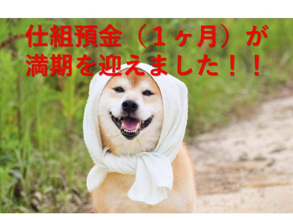 f:id:inujiro55:20190310002529j:plain