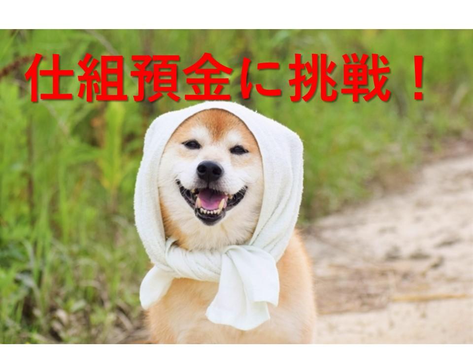 f:id:inujiro55:20190310002938j:plain