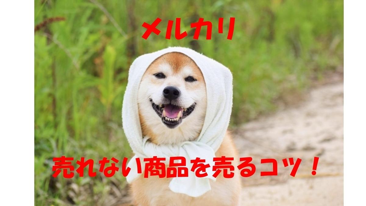 f:id:inujiro55:20190405225458j:plain
