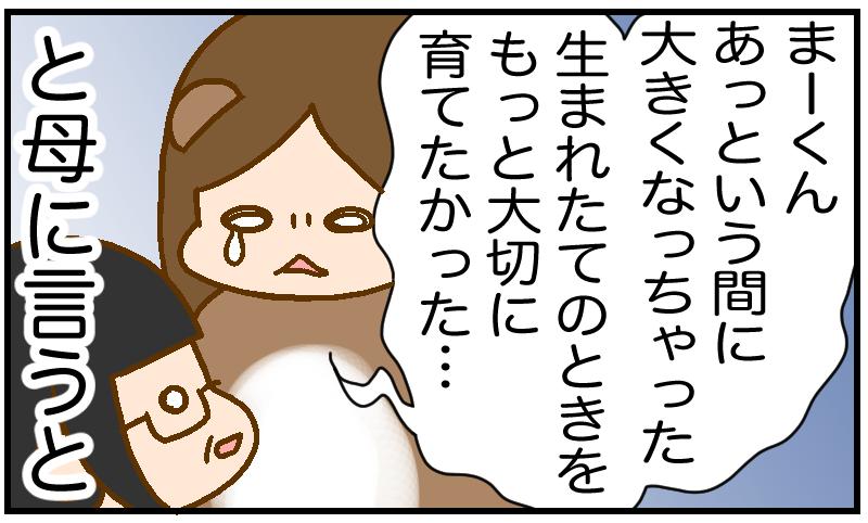 f:id:inunezuminagi:20210315110833p:plain