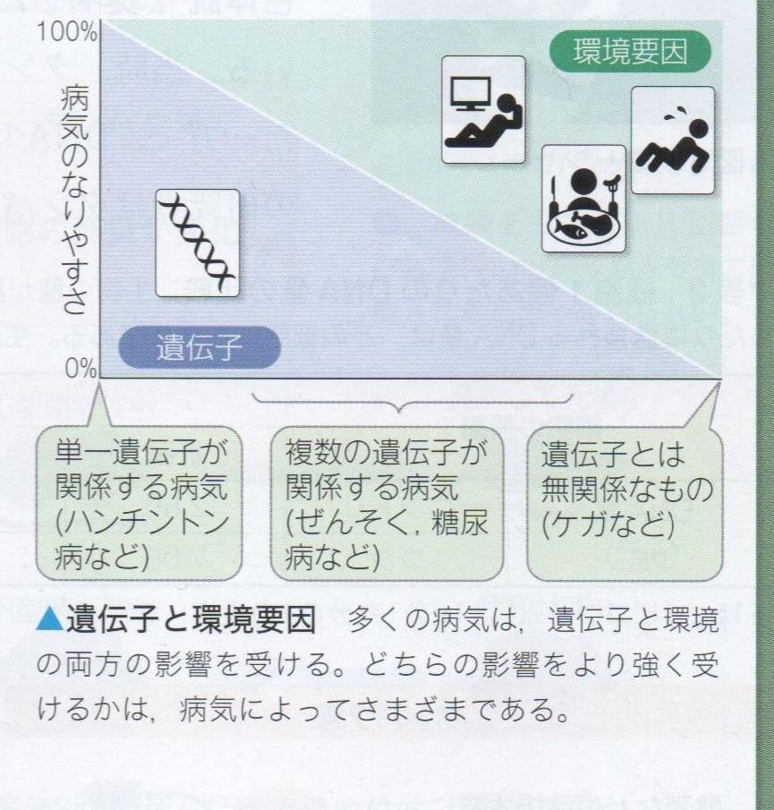 f:id:inunohibi:20181023213428j:plain