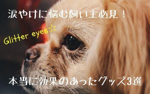 f:id:inunokoto:20200421212033j:plain