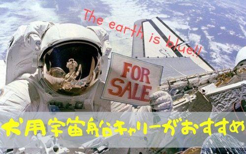 宇宙飛行士の写真