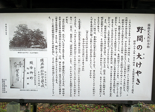 20111112143808