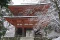 京都新聞写真コンテスト 雪の仁王門