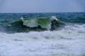 京都新聞写真コンテスト押し寄せる波
