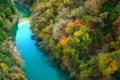 京都新聞写真コンテスト 秋の渓谷