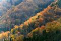 京都新聞写真コンテスト 稜線輝く