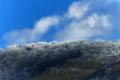 京都新聞写真コンテスト 輝く稜線