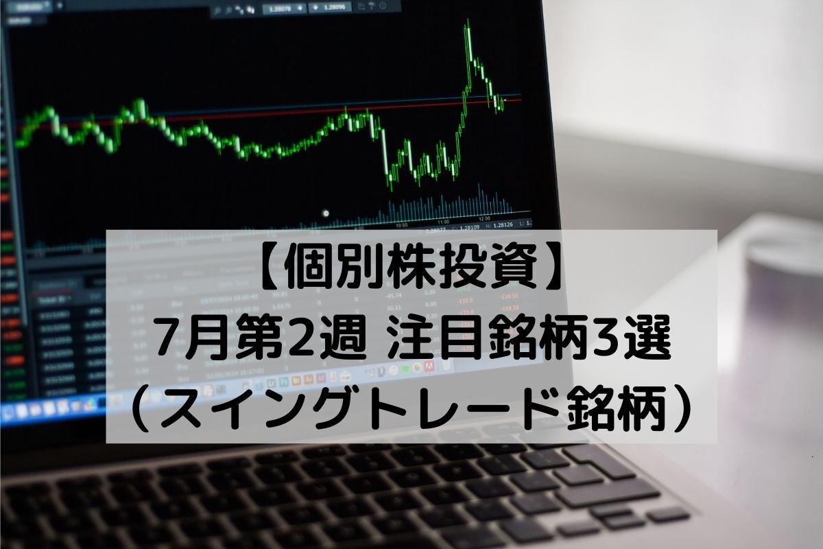 f:id:investor_1995:20210704214103p:plain