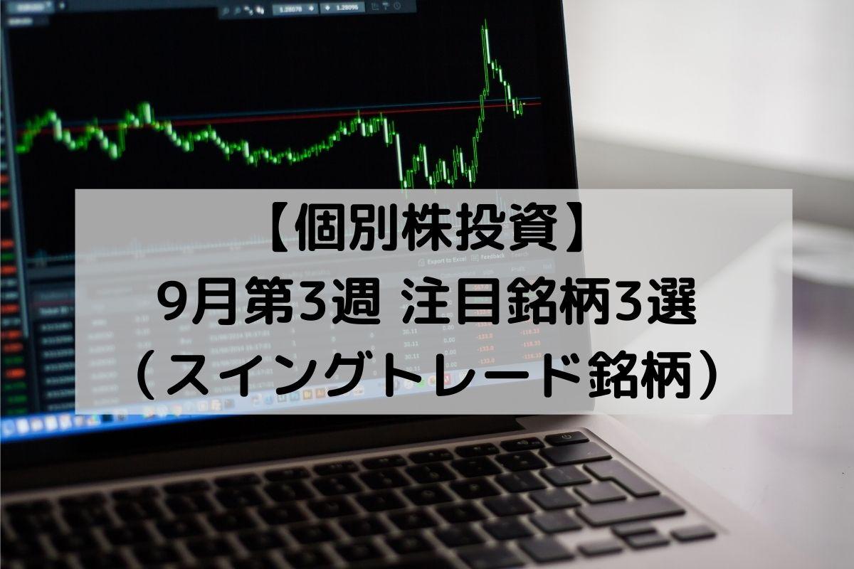f:id:investor_1995:20210920214747j:plain