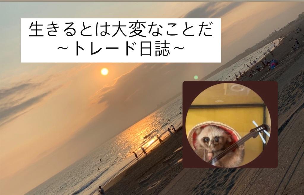 f:id:investor_tanuki:20210711105950j:image