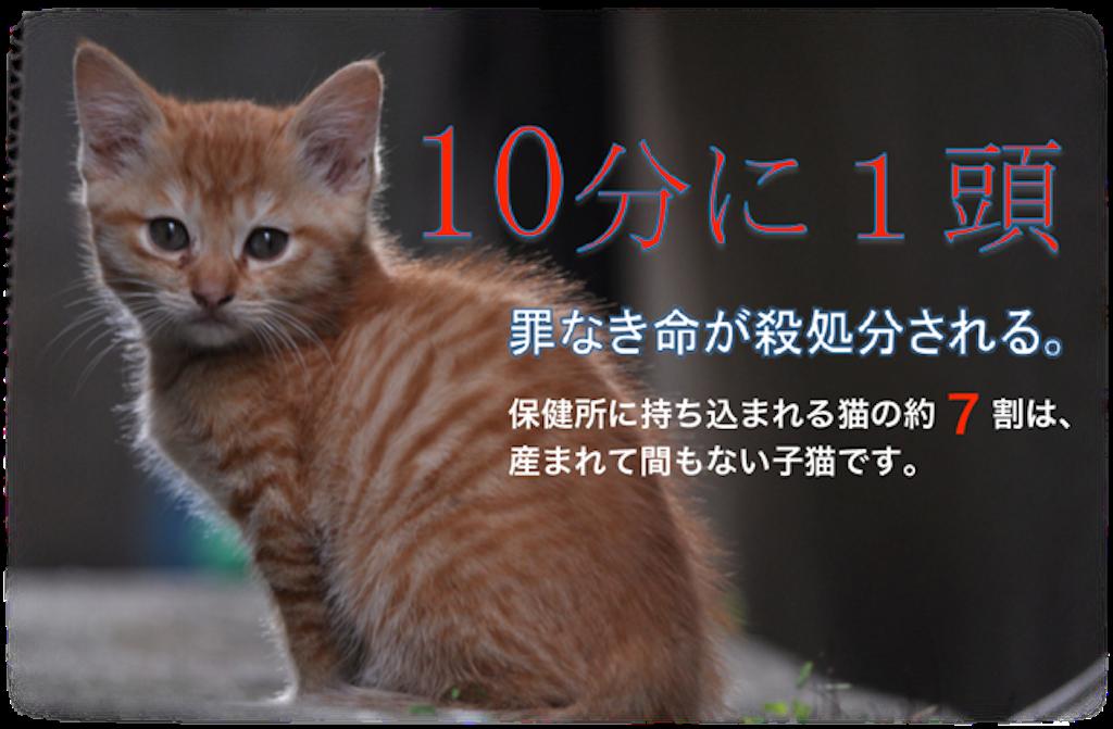 f:id:ioritorei:20211002102941p:image