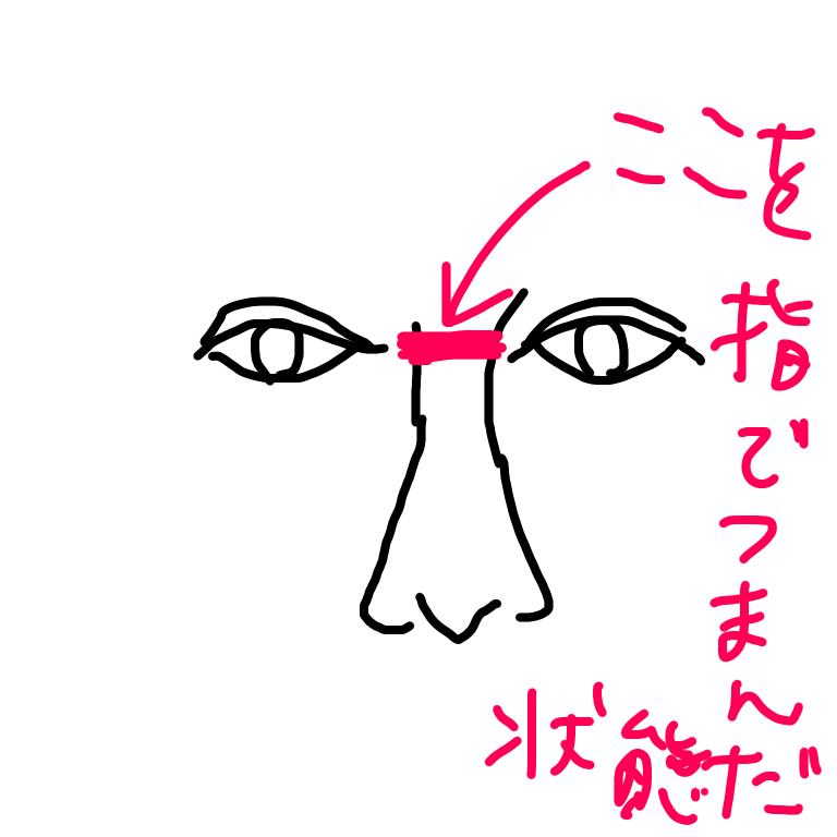 f:id:ippanjinyamada:20210610000425p:plain