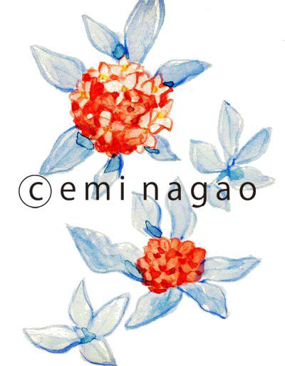 水彩 イラストレーター花