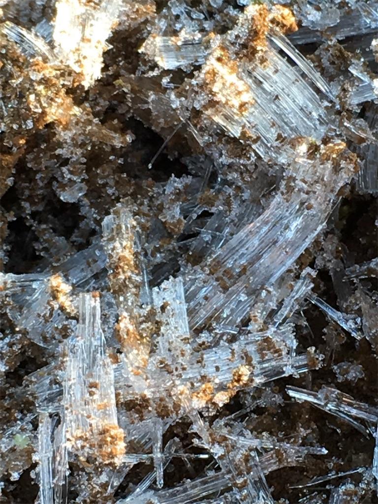f:id:iris-crystal:20170703102717j:image
