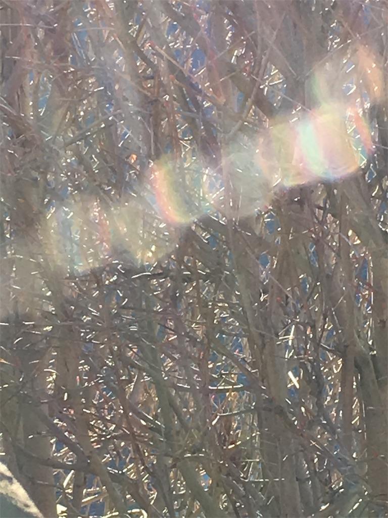 f:id:iris-crystal:20170811185932j:image