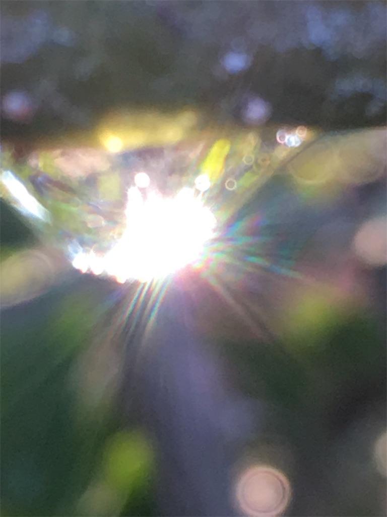 f:id:iris-crystal:20170819144224j:image