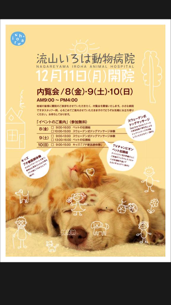 f:id:iroha-vet:20171204154709j:plain
