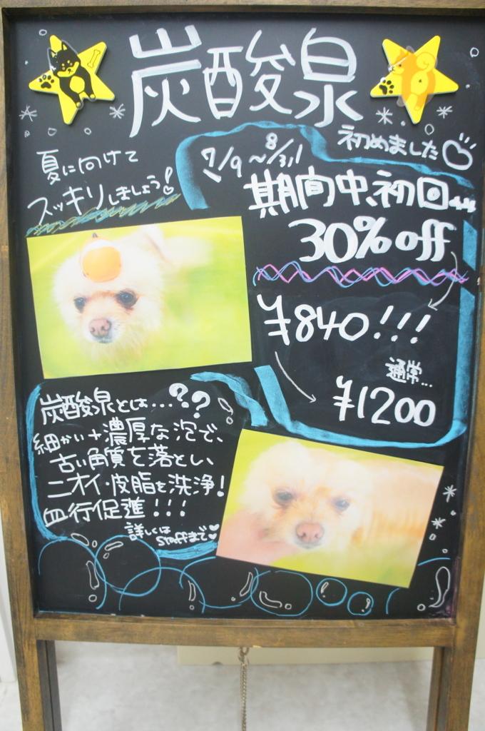 f:id:iroha-vet:20180708134250j:plain