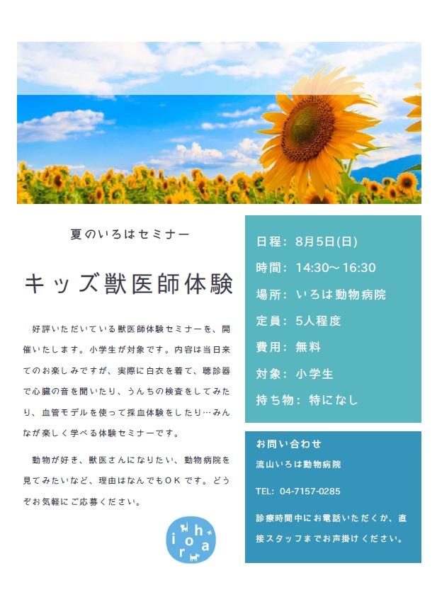 f:id:iroha-vet:20180716235311j:plain