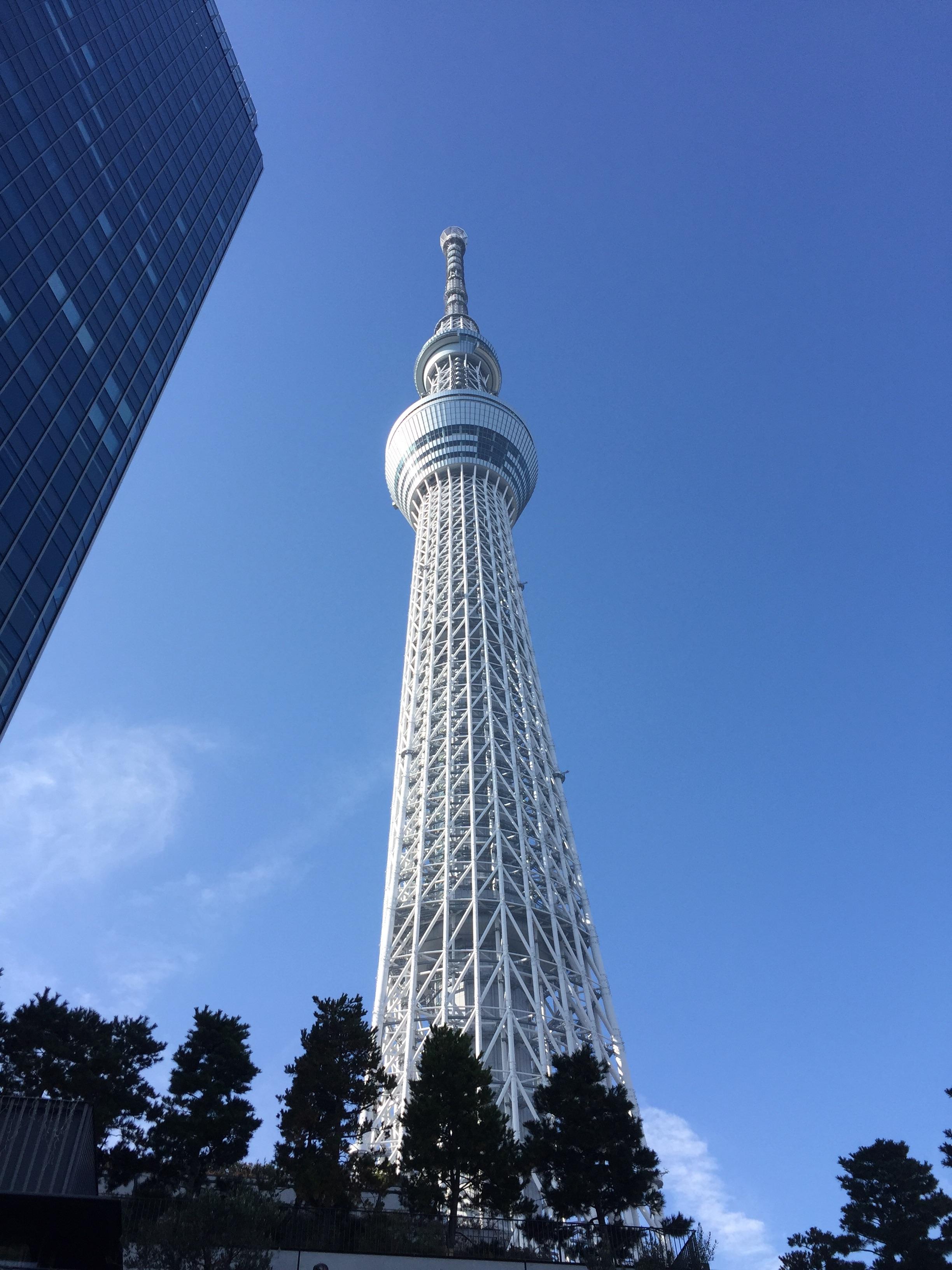 f:id:irohanihoheto-shinobi1105:20161124130624j:image