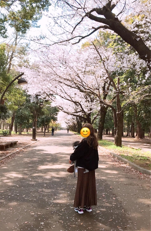 f:id:irohatirinuru:20190408215116j:image