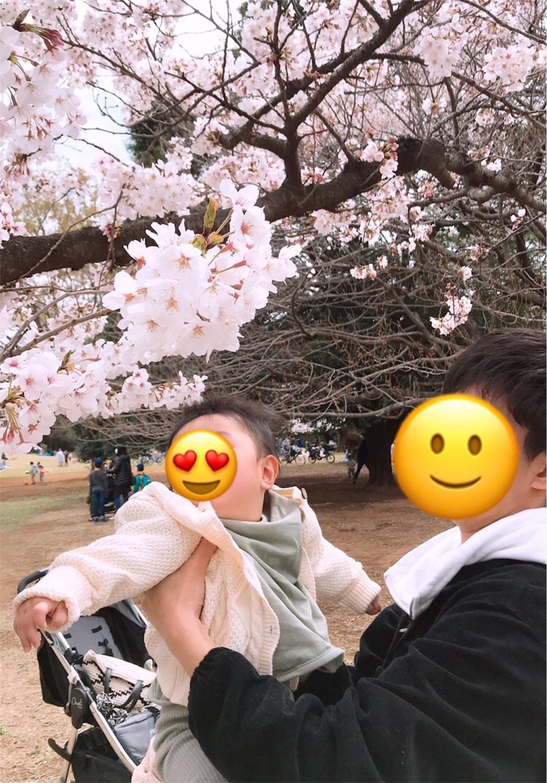 f:id:irohatirinuru:20190408215540j:image