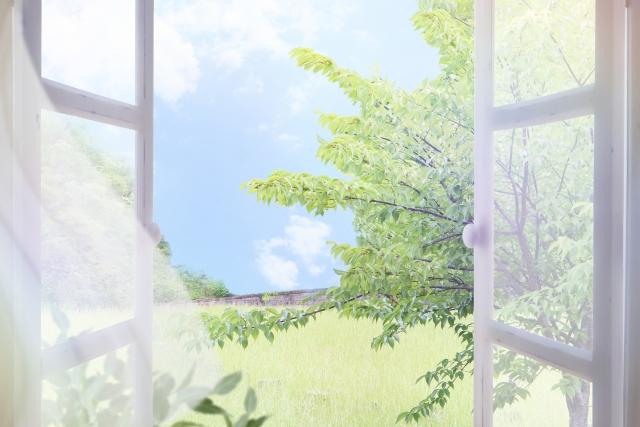 f:id:iroiroyu-yuu:20200404165934j:plain