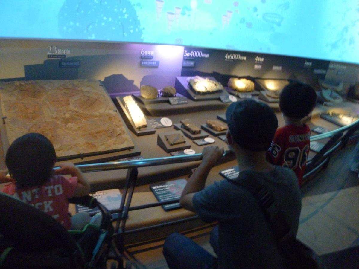 国立科学博物館 恐竜