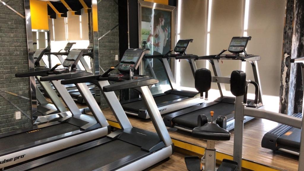 hd fitnessでビジター筋トレ shin s weblog